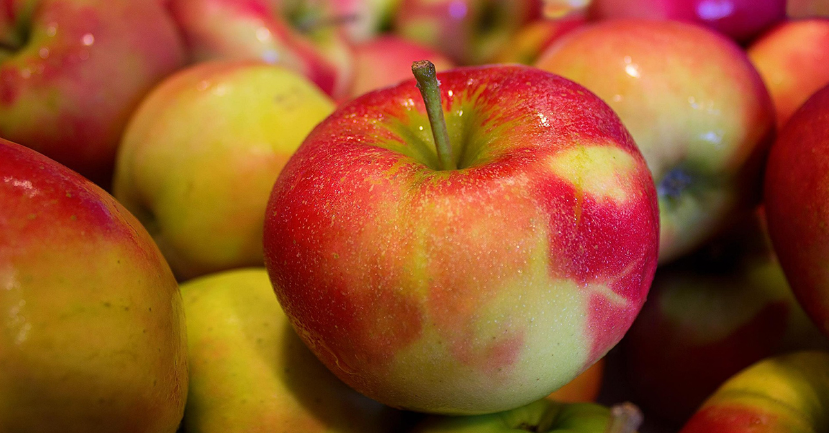 Apples 1200x628