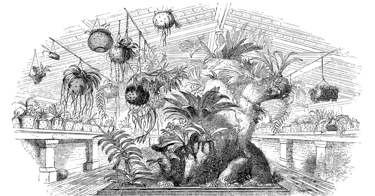 Greenhouse 1200-628
