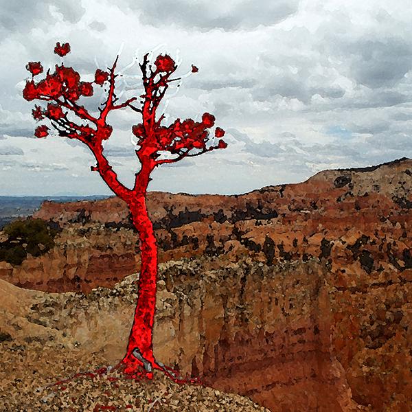 Lava Pine tall 600x600