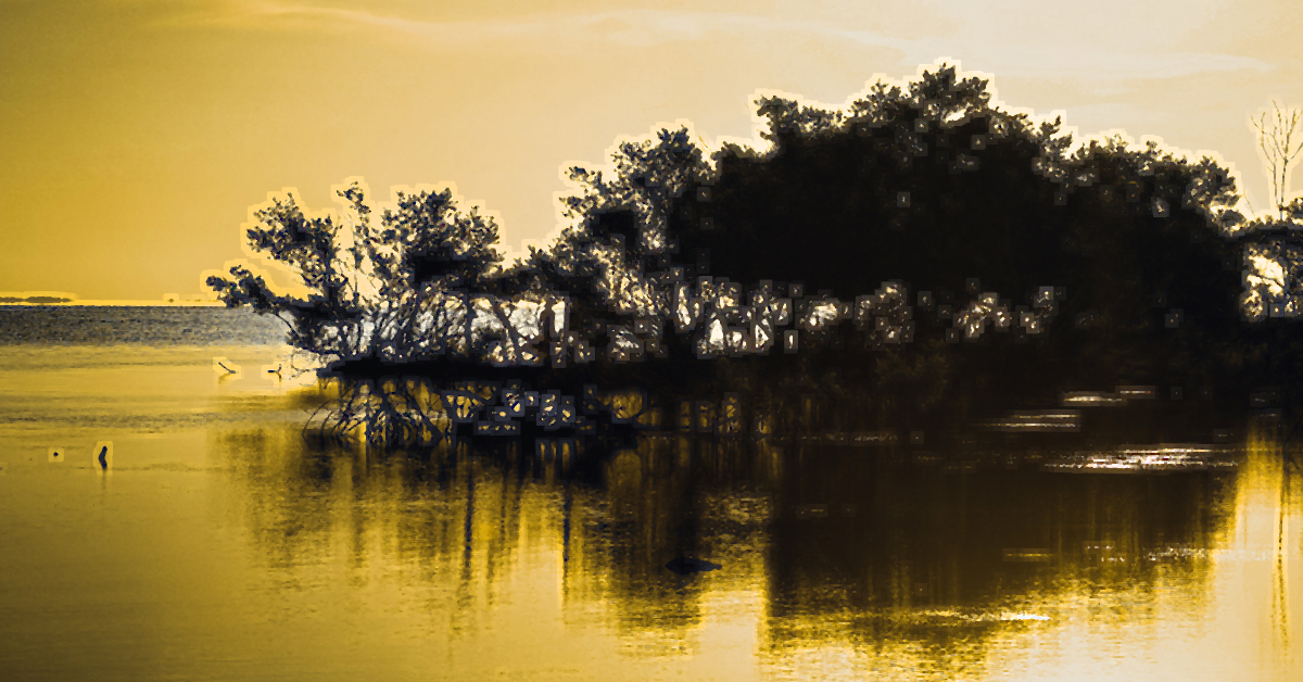 Floating Mangrove 1200x628